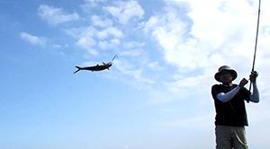 博多湾で社内釣り大会