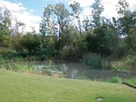 「コマツ里山」ビオトープ池周辺