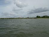 旧江戸川分岐点から東を望む
