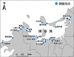 博多湾調査地点図