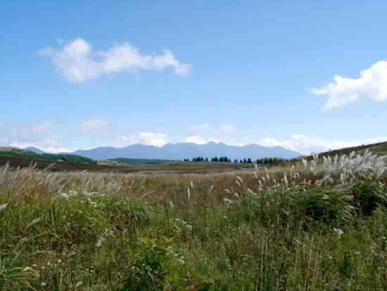 広々とした霧ヶ峰草原 遠くに見えるのは南アルプスの山々