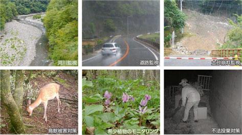 ワイヤレス自動撮影カメラの使用例