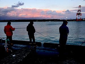 釣り部:今夜の釣果は…?