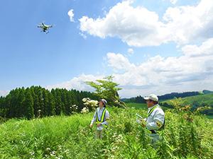 草原の希少植物調査