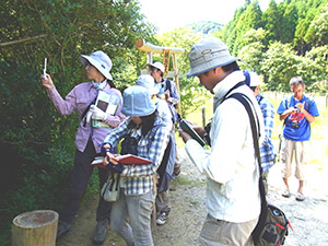 自然観察会の開催