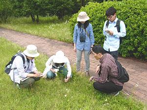 社員の勉強会。近くの緑地公園にて。専門分野以外のことも知りたい!