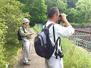 調査風景、対岸のトンボを観察。